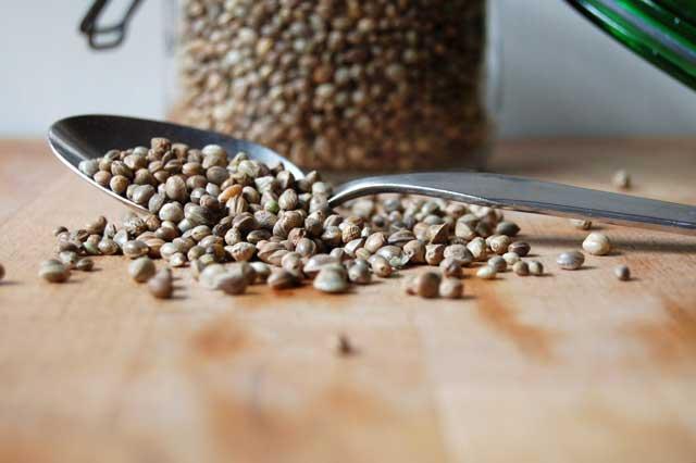 Farina di Semi di Canapa: Proprietà, Usi in Cucina, Valori Nutrizionali