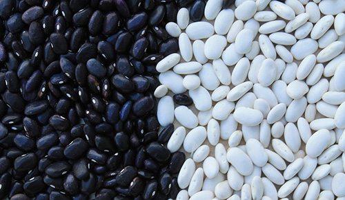 Proteine alternative alla carne: fagioli