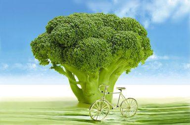 Broccoli: Valori Nutrizionali e Benefici per la Salute