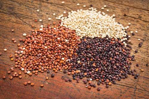 quinoa nera rossa bianca