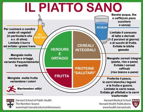 Piatto sano dell'Harvard Medical School
