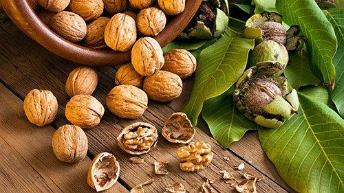 Noci: Proprietà, Benefici, Calorie e Valori Nutrizionali