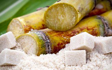 Qual è la differenza tra saccarosio, glucosio & fruttosio?
