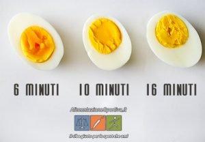 Quante Proteine Ha Un Uovo Sodo?