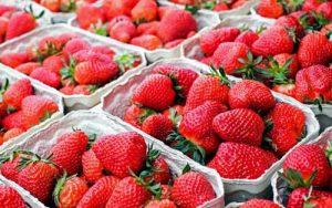 Quante calorie hanno le fragole?