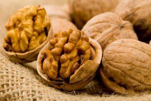 Elenco degli alimenti con lipidi